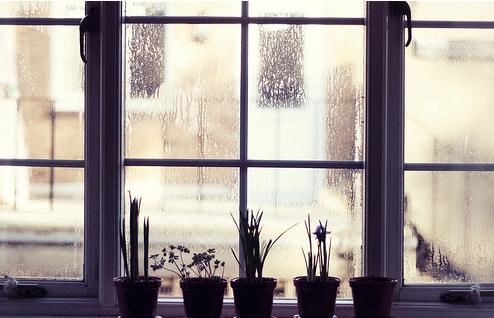 Окно правила советы как выбрать окно